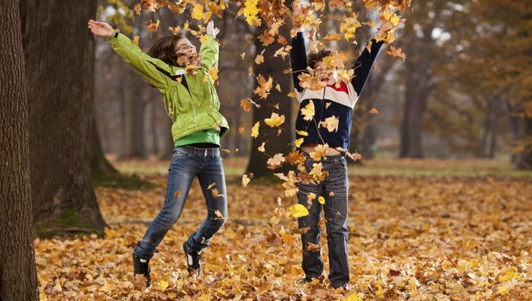 Claves para la limpieza de otoño